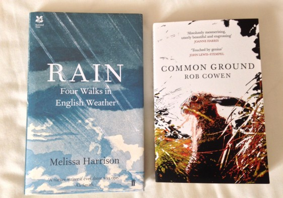 Rain and Common Ground