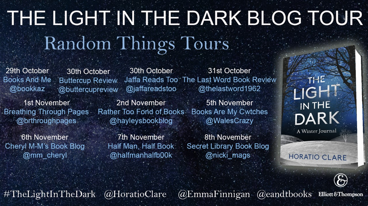 Final Light in the Dark Blog Tour Poster