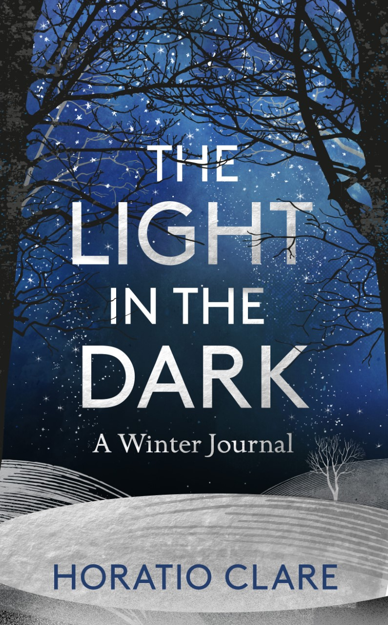 Light in the Dark Cover