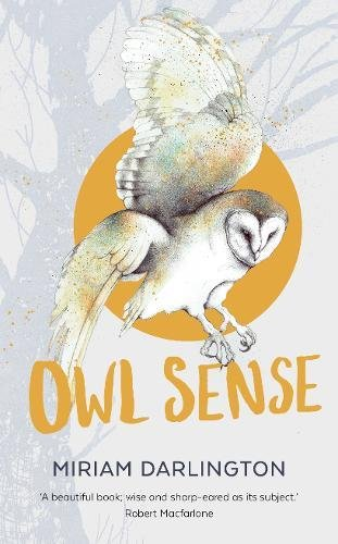 OWL SENSE.jpg