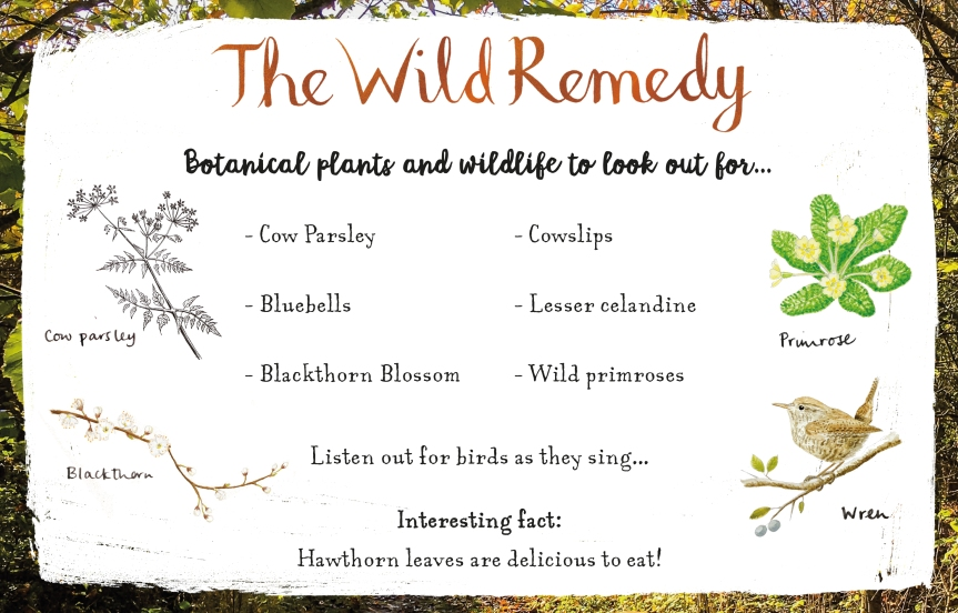 Wild Remedy blog tour helpful guide.jpg