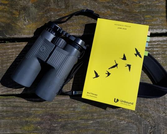 Bird Therapy.jpg